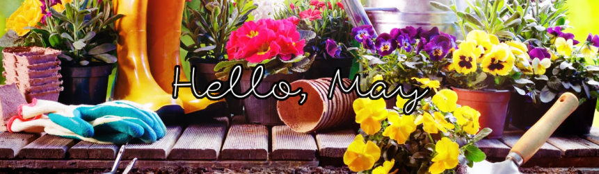 Hello, May!